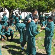 KRCA, Arbour Day, Southern Suburbs Satellites, Environmental Education