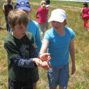 KRCA, Southern Suburbs Satellites, Environmental Education
